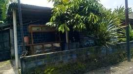 Kode : RSH 1500 #Rumah Sederhana Murah di Jetis Bantul Yogyakarta