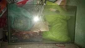 Fish tang aqarium