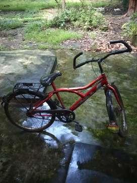 Racing Cycle..