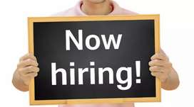 Wanted front office executive/team leader