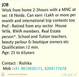 Work Part Time from. Home Digitally with a MNC