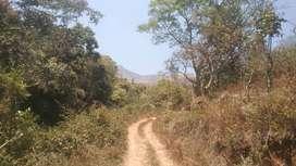 15 Acre land for sale in near ganeshpuram, kodaikanal