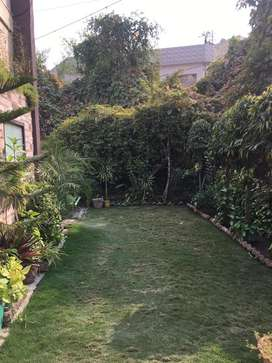 2 bhk availabe in 39 setor