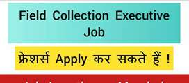 Collection executive/Marketing executive/payment collection jobs