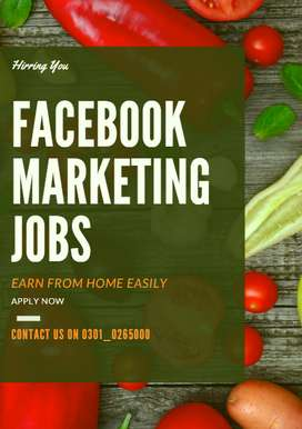 Get Paid by Facebook Marketing Jobs Online from your home