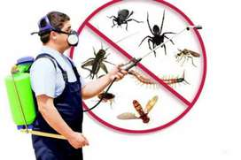 PEST CONTROL TECHNICIAN REQUIRED