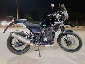 Bullet Himalayan 425 cc
