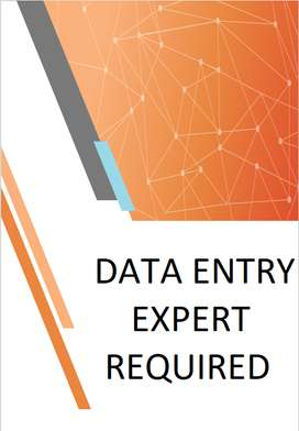Data Entry Experts Required