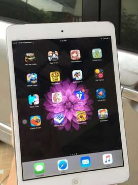 iPad Mini Cellular 4G and Wifi 64Gb