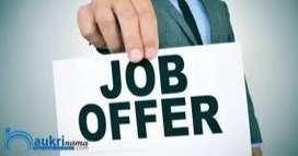 Required Female & Male Executives for Sales & computer operator cum PA