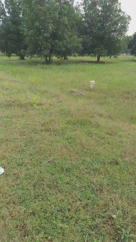 100% children fixed deposit plots at kanchikacherla