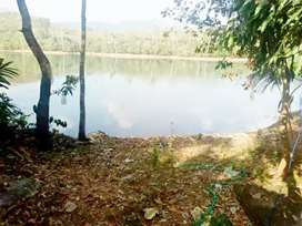 Beautiful house  and land near neyyar dam for sale