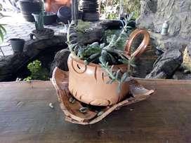 Pot bunga bentuk cangkir berbagai ukuran