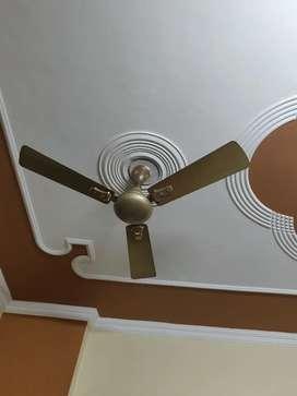 Polar ceiling fan