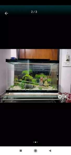 Fish Aquarium for sell