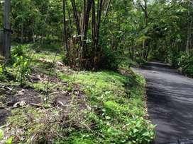 Tanah dekat Jalan Wates, 350m dari Polres Kulon Progo. SF3744