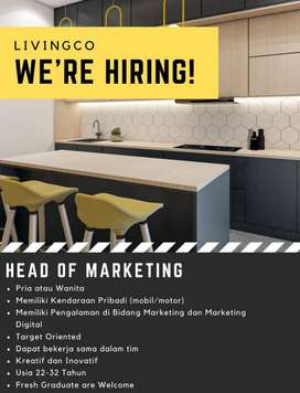Head Marketing Design Interior