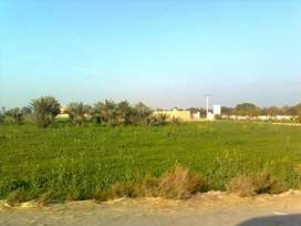 Agriculture land 8 Acre