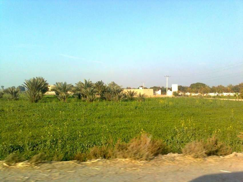 Agriculture land 8 Acre 0