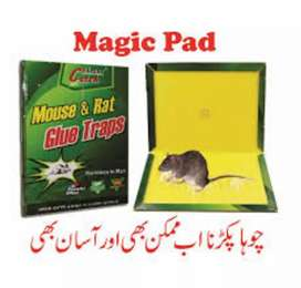 MOUSE GLUE TRAP ; RAT GLUE TRAP (pack of 3 )
