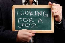 Work from home for Fresher / Experienced / Students / Housewifes also