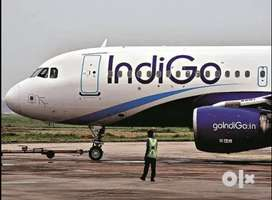 We are urgently hiring for driving in Gorakhpur Airport