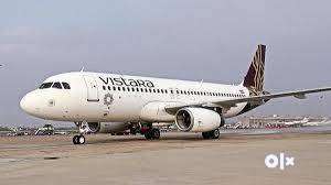 Apply in Vistara Airline For various Post .  Helping and assisting the 0
