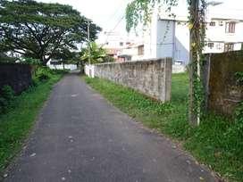 10 cent Prime House plot at Pachalam pj antony Road In  Nice Garden