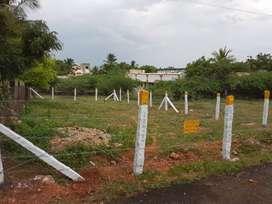 Plot available for sale in Kurinchi Nagar, Tirunagar, Madurai 6.5 cent