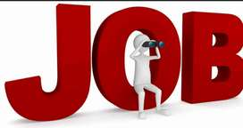 Marketing executive for business needed
