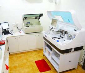 Laboratory Technician and Blood Collection (Phlebatomist)