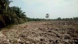 Tanah Murah Di Kota Pekanbaru 200 meter Hanya 35 Juta