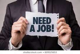Male female both can apply