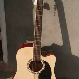 New guitar 6 month Old with Bag