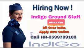 Vacancy in indigo airline 2019 for 10th 12th gradute