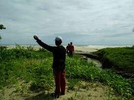 Dijual tanah 2 hektar di pantai bayah dekat sawarna