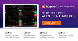 Free Iq option digital marketing, no investment
