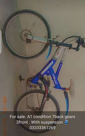 a1 bicycle