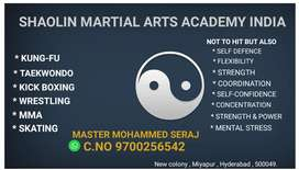 Martial Arts_ kungfu-fu,Taekwondo,kickboxing,MMA,Skating