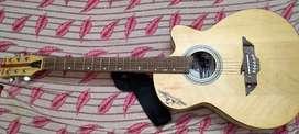 Challenger Acoustic guitar