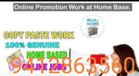 Weekly payment available we are providing genuine home base data entry