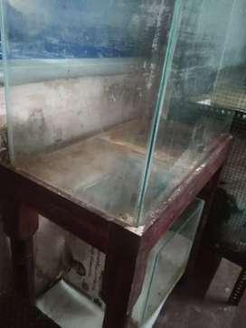 Aquariuam with stand