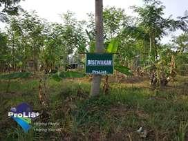 Disewakan Tanah Kapling di Daerah Stadion Mini Jl. Ovis - Purwokerto