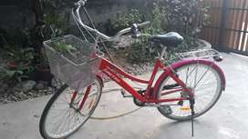 Sepeda keranjang united TC3650