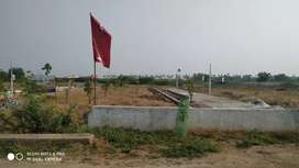 350 meters from warangal highway 5km from yadadri temple Dtcp