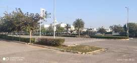 350 Sqyd Plot with 200ft wider Road DLF New Chandigarh Mullanpur
