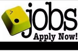 Vacancy for boys & girls in limited company