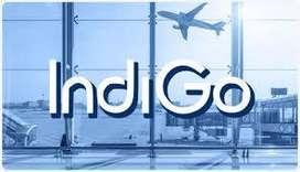 Ground Staff Job 10th, 12th, Graduate pass at Domestic Airport  Greeti