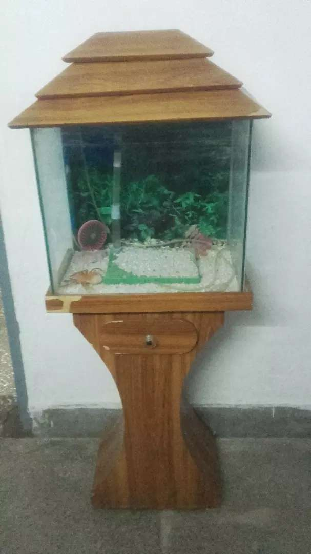 Fish tank with  table for sale 0