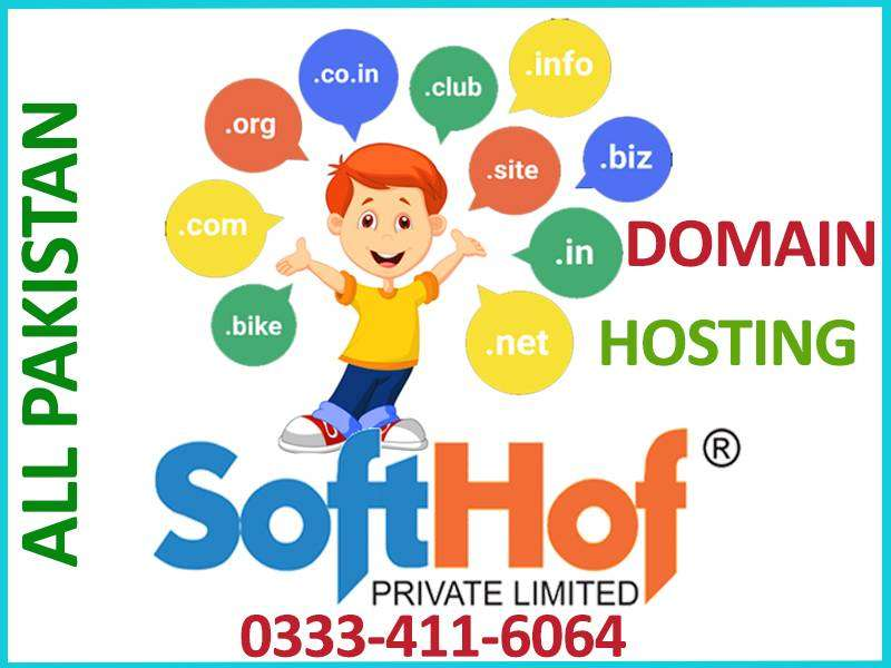 Free Domain Registration with Hosting in all Pakistan 0